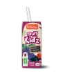 Fruit Kid'z Cocktail Raisin Cassis 3 briquettes de Vitabio